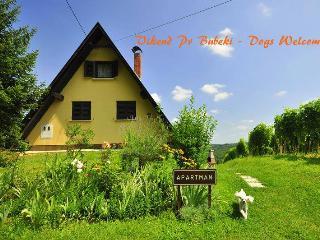 Vikend pri Bubeki - Sveti Martin na Muri vacation rentals