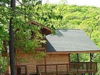 Enchanted Forest: Hilltop Hideaway Cabin - Eureka Springs vacation rentals