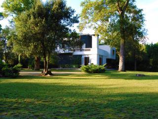Villa Versiliana - Pietrasanta vacation rentals