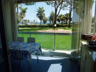 Elegant Apt  close to the beach in the bay Cannes - frejus vacation rentals