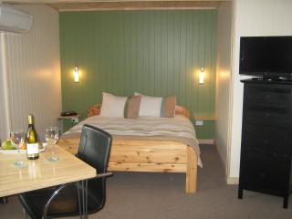 Peak-Sportchalet - Studio and B&B - Wanaka vacation rentals