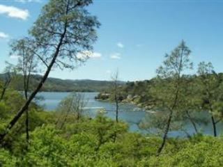 Cois Dara-Shore Of Oak!-Lake Front Home - Image 1 - Lake Nacimiento - rentals