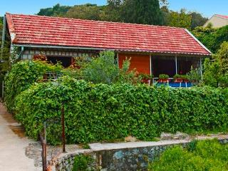 Little house for rent - Zaton vacation rentals