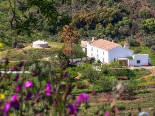 Lovely authentic Andaluz farmhouse in NaturalPark - Villanueva del Trabuco vacation rentals