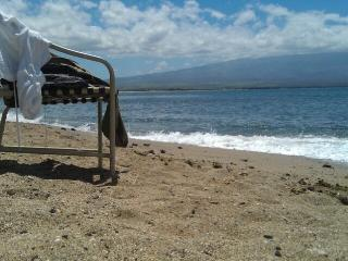 Maui Direct Ocean Front Condo - Luxury View - Maalaea vacation rentals