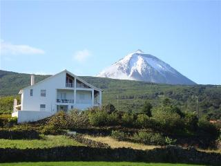 PICO PARADISE-Holiday homes-Casa do Canto-S. Roque - Sao Roque do Pico vacation rentals