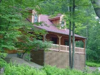 The Bear Dance Cabin at Wintergreen - Wintergreen vacation rentals