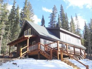 Custom Cabin with Amazing Views, 20 Min from Breck - Breckenridge vacation rentals