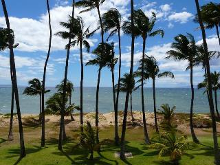 Hale Kai O'Kihei 1 Bedroom 207 - Kihei vacation rentals