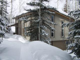 Snowmass, Co - Ski-in/Ski-out 4 Bedroom House - Snowmass Village vacation rentals