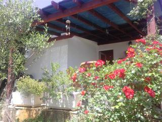 House Oliva - Stari Grad vacation rentals