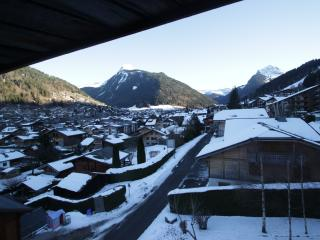 36625 - Rhone-Alpes vacation rentals