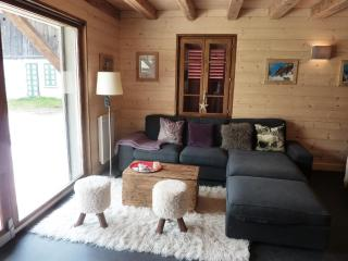 38107 - Morzine-Avoriaz vacation rentals
