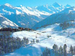 from bed to ski - Melchsee-Frutt vacation rentals