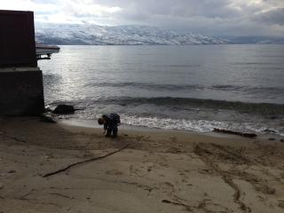 FAMILY FRIENDLY suite WALK TO BEACH - Kelowna vacation rentals