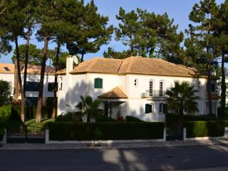 Nice quiet villa near ocean beach/golf/marina - Alcacer do Sal vacation rentals