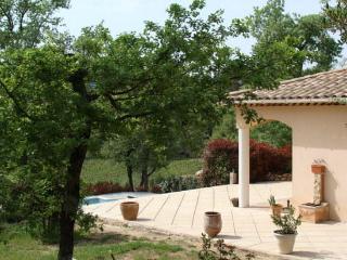 Luxury Villa Vineyard, Besse sur Issole, Provence - Besse-sur-Issole vacation rentals