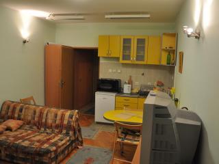 Apartman na Zlatiboru (mountain Zlatibor apartment - Zlatibor vacation rentals