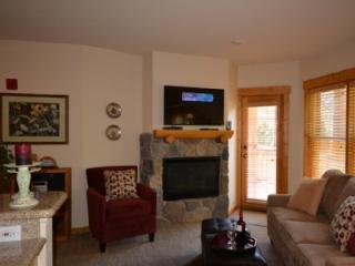 Gorgeous 1 Bdrm Condo Walk to lifts Hot Tubs - Keystone vacation rentals