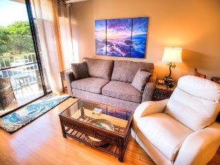 Modern 2 Bedroom Fully Air-Conditioned Condo across from Kamaole Beach Park - Kihei vacation rentals