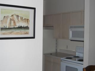BEAUTIFUL CONDO CLOSE TO CLEARWATER BEACH - Clearwater vacation rentals