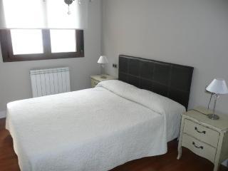 NUEVO, DE LUJO Y EN PLENO CENTRO HISTORICO 3 A - Salamanca vacation rentals