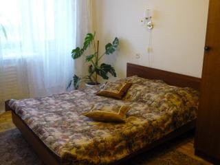 Comfortable flats - Urals vacation rentals