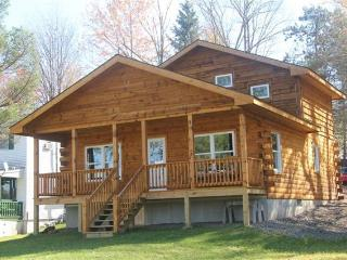 New Log Cabin on Duck Harbor waterfront - Equinunk vacation rentals