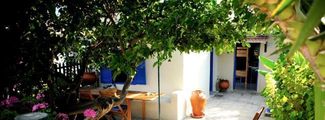Private garden - Rhodesvilla at Theologos, Rhodes - Petaloudes - rentals