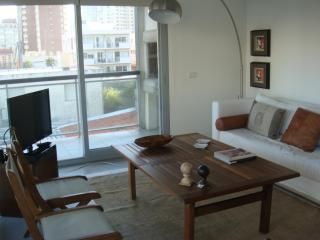 LOCATION! LOCATION! LOCATION in PUNTA del ESTE, UR - La Barra vacation rentals