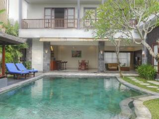 Fanisa,Modern Chic 3 Bed Villa,150m to Echo Beach - Canggu vacation rentals