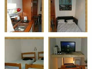 Tiny full flat in center free wifi (Budapest) - Budapest & Central Danube Region vacation rentals