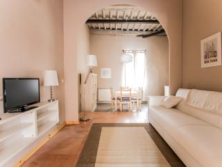 Apt with terrace in the heart of town - Lucca vacation rentals