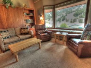 TL505 Telemark Lodge 1BR 2BA - West Village - Copper Mountain vacation rentals