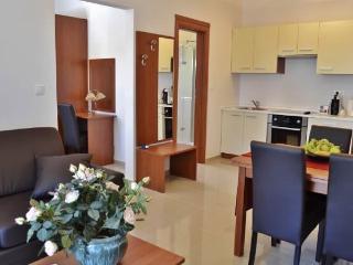 Apartments Matija - 29211-A2 - Sv. Filip i Jakov vacation rentals