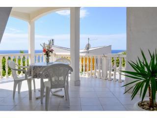 Apartments Zvonko - 43321-A7 - Vis vacation rentals