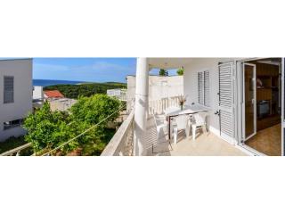 Apartments Zvonko - 43322-A1 - Vis vacation rentals
