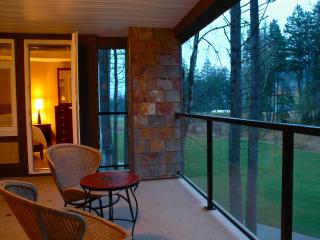 Bear Mountain Condo on the 9th - Cobble Hill vacation rentals