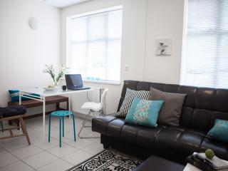 Nice apartment in central Reykjavík - Reykjavik vacation rentals