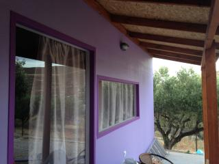New Colorful Studio In Heraklion - Agia Pelagia vacation rentals
