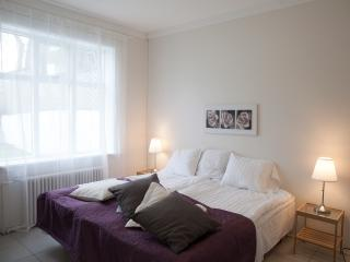 Fantastic apartment  near everything in Reykjavík - Reykjavik vacation rentals