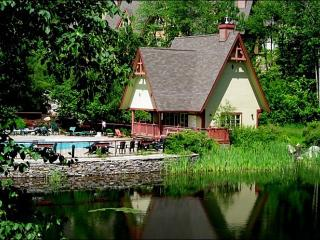 Beautiful Views of Nature - Close to Hiking Trails & Ice Skating Rink (6090) - Mont Tremblant vacation rentals