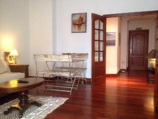 URUMEA APARTMENT - San Sebastian - Donostia vacation rentals