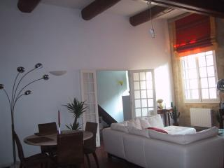 Charming Aix en Provence Apartment in Historic Center - Greasque vacation rentals