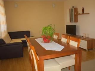 Apartment Temza - 44721-A1 - Krilo Jesenice vacation rentals