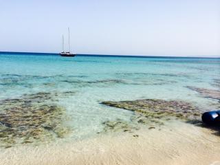 Ibiza & Formentera Sailing vacations - Ibiza Town vacation rentals