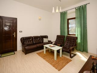Apartments Stanislava - 75611-A1 - Fazana vacation rentals