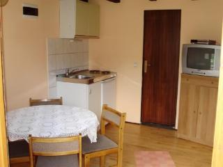 Apartment Andrijana - 80102-A2 - Vrelo Korenicko vacation rentals