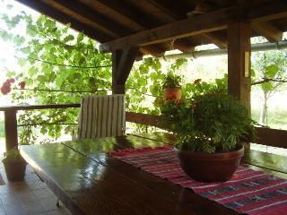 House Biserka - 85301-K1 - Otocac vacation rentals
