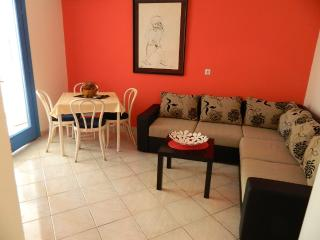 Apartments and Room Savo - 92281-A1 - Rafailovici vacation rentals